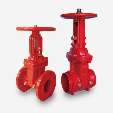 200PSI OS&Y GATE VALVE